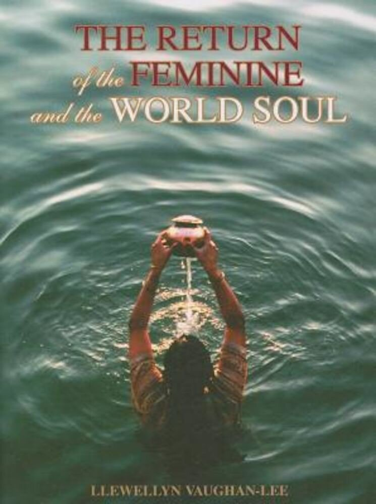 The Return of the Feminine & the World Soul, Paperback