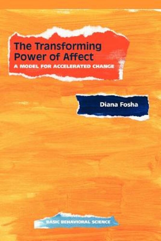 The Transforming Power of Affect: A Model for Accelerated Change, Paperback