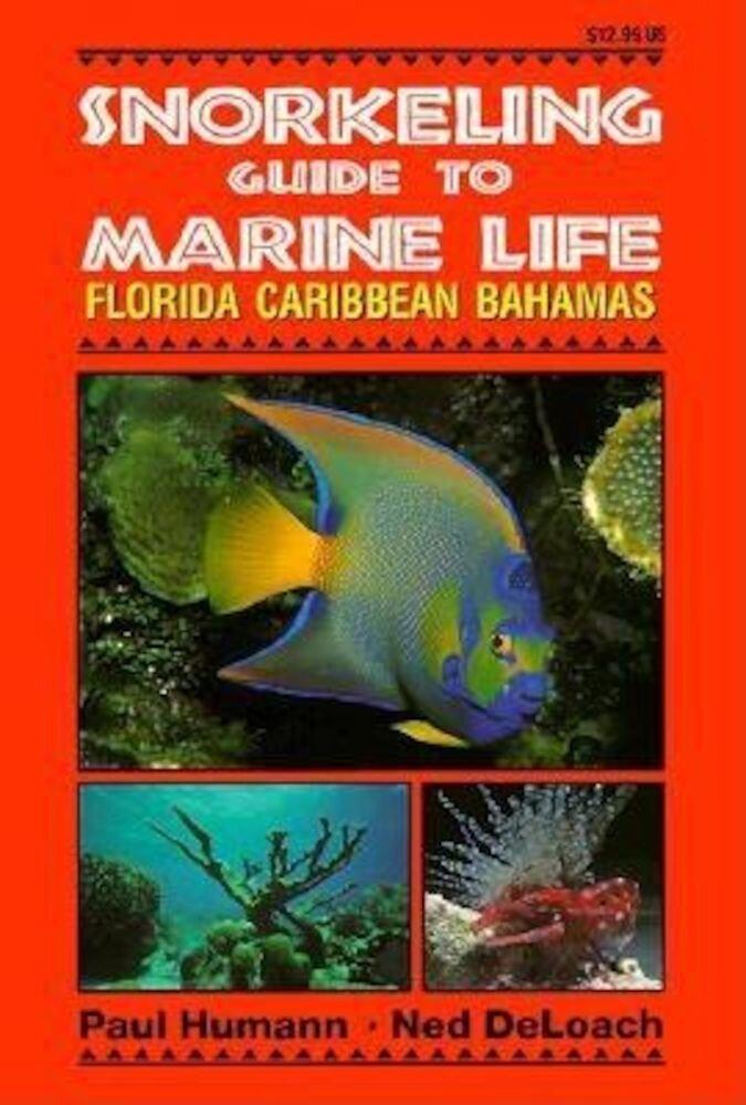 Snorkeling Guide to Marine Life Florida, Caribbean, Bahamas, Paperback