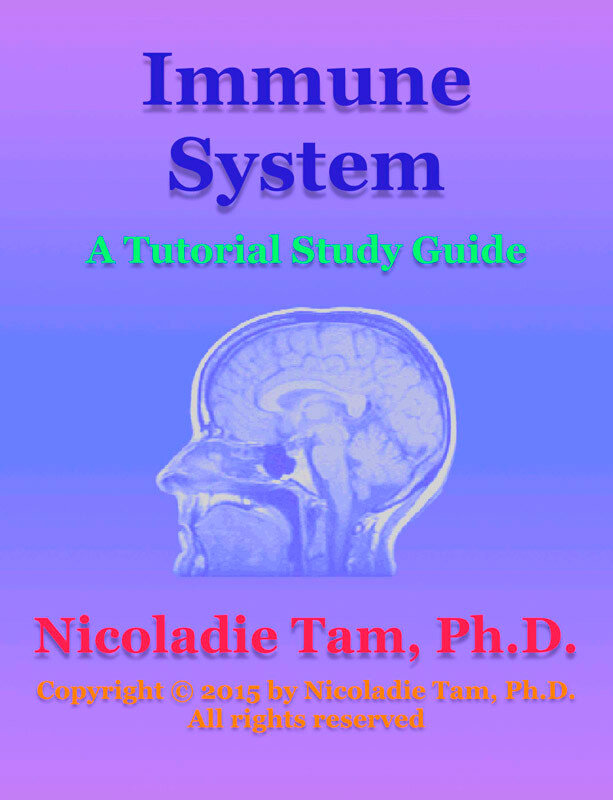 Immune System: A Tutorial Study Guide (eBook)