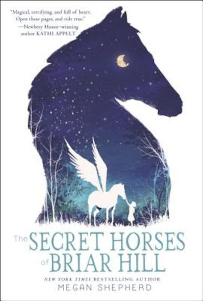 The Secret Horses of Briar Hill, Hardcover
