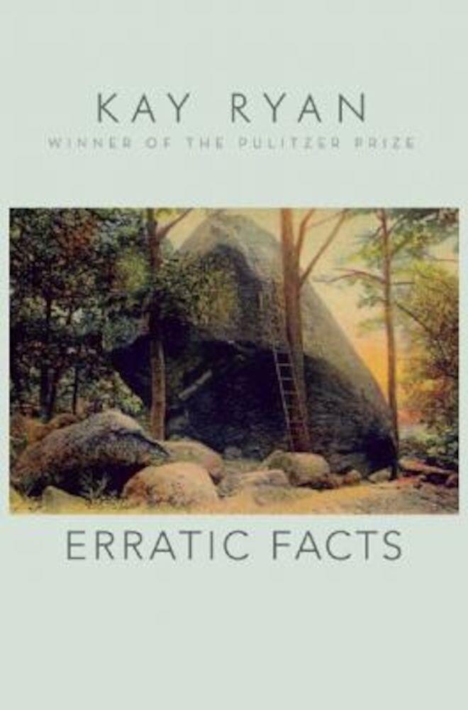 Erratic Facts, Paperback