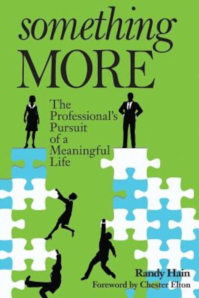 Something More: The Professional's Pursuit of a Meaningful Life, Paperback