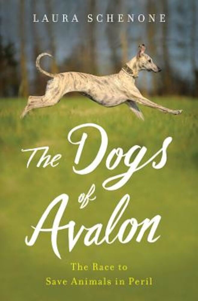 The Dogs of Avalon: The Race to Save Animals in Peril, Hardcover