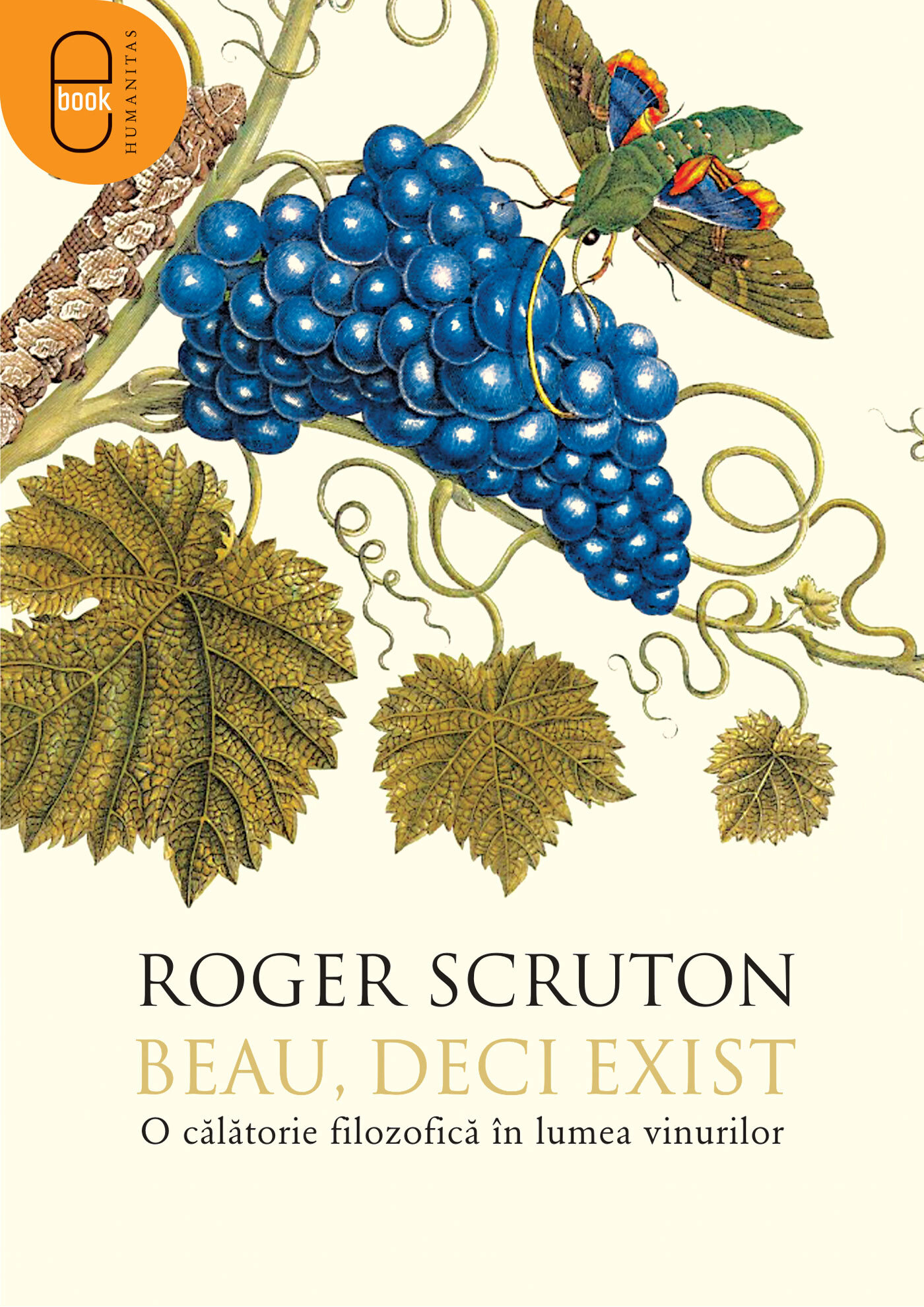 Beau, deci exist (eBook)
