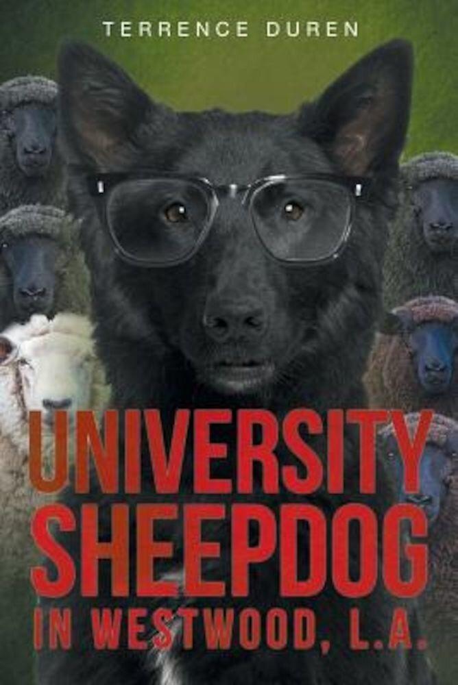 University Sheepdog in Westwood, L.A., Paperback