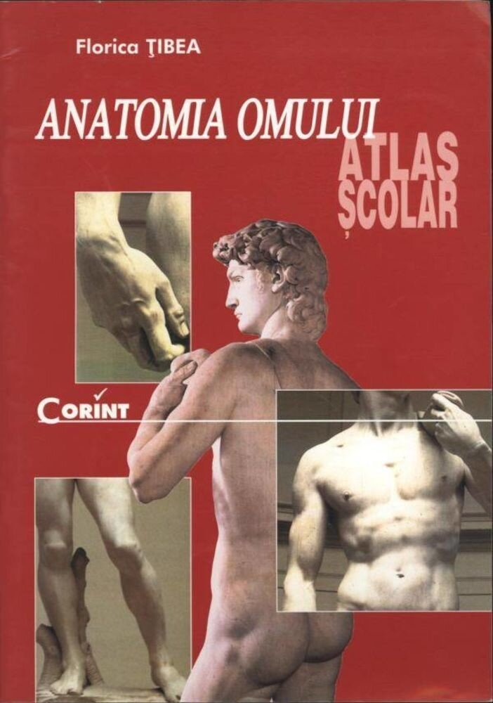Coperta Carte Anatomia omului. Atlas scolar