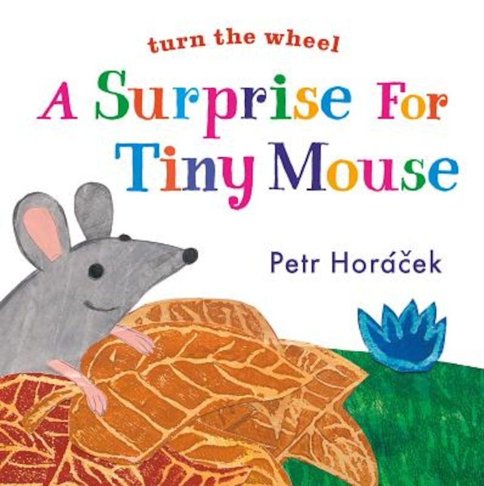 A Surprise for Tiny Mouse, Hardcover