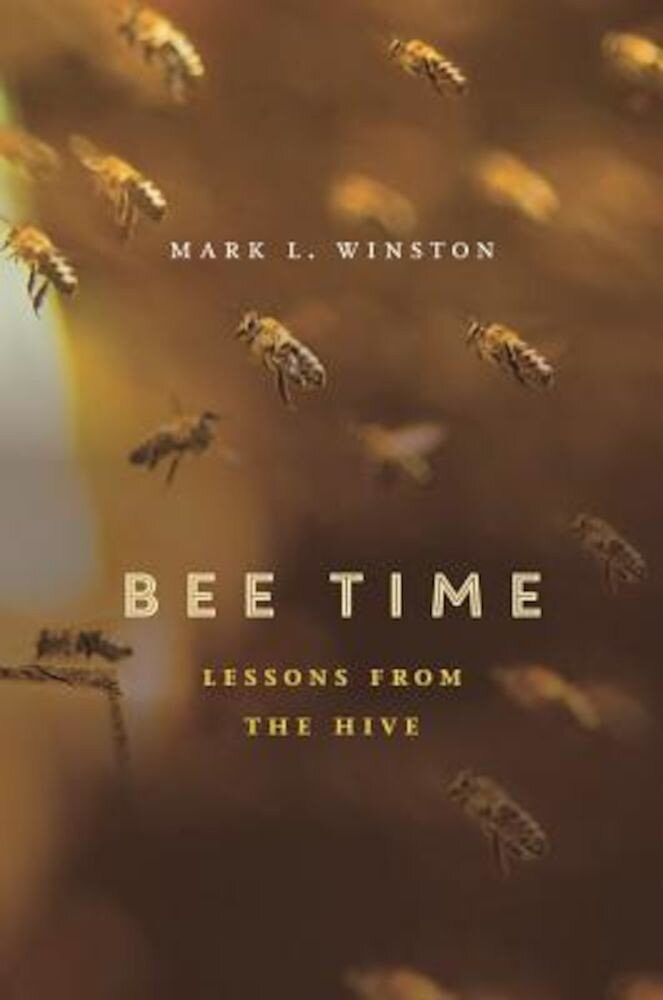 Bee Time: Lessons from the Hive, Hardcover