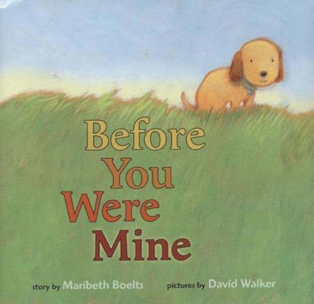 Before You Were Mine, Hardcover