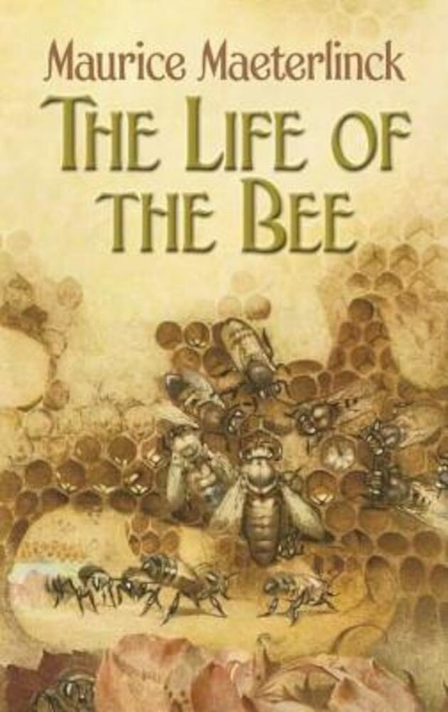 The Life of the Bee, Paperback