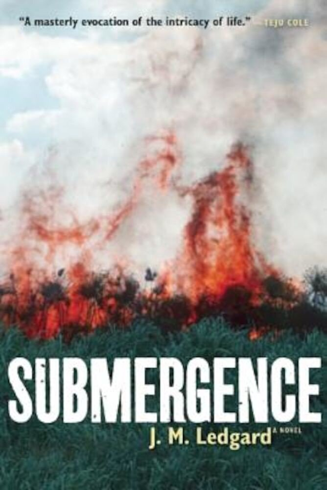 Submergence, Paperback