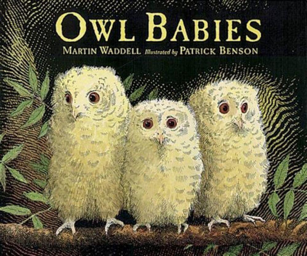 Owl Babies, Paperback