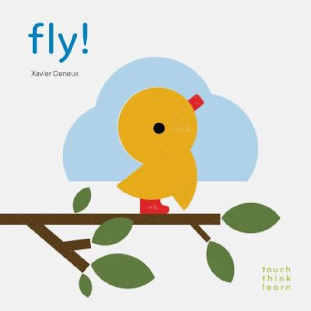 Touchthinklearn: Fly!, Hardcover