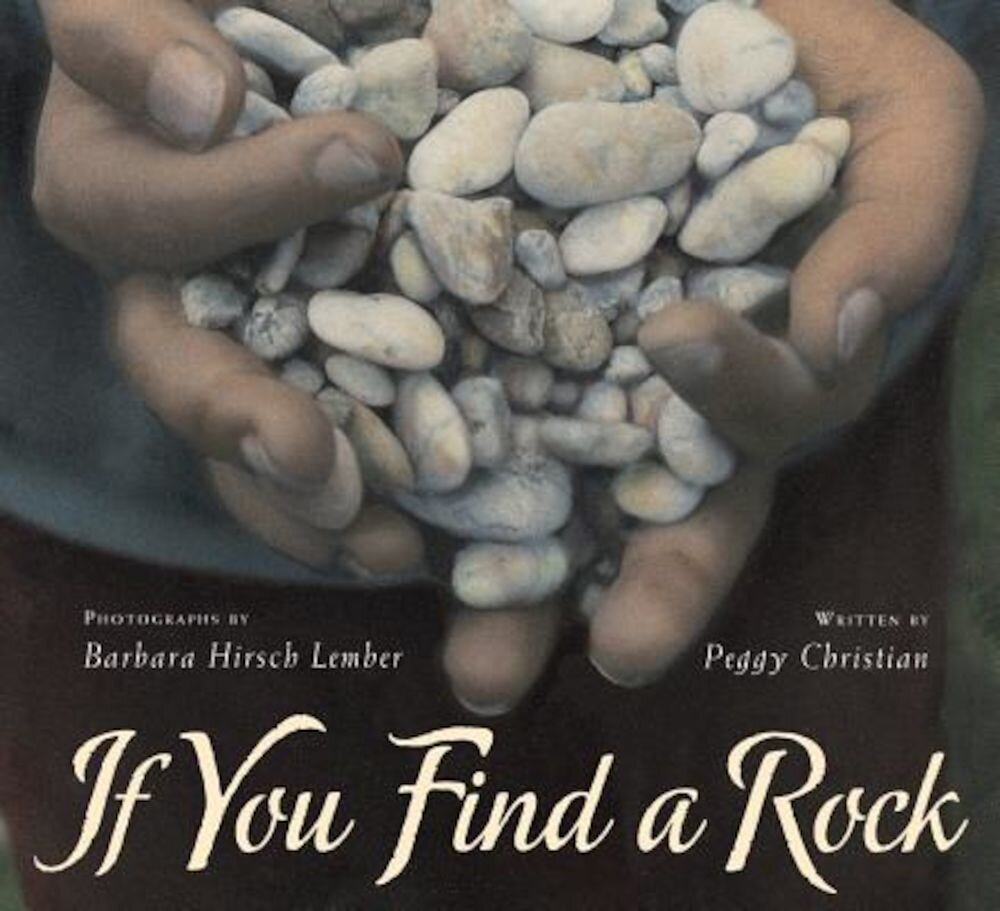 If You Find a Rock, Paperback