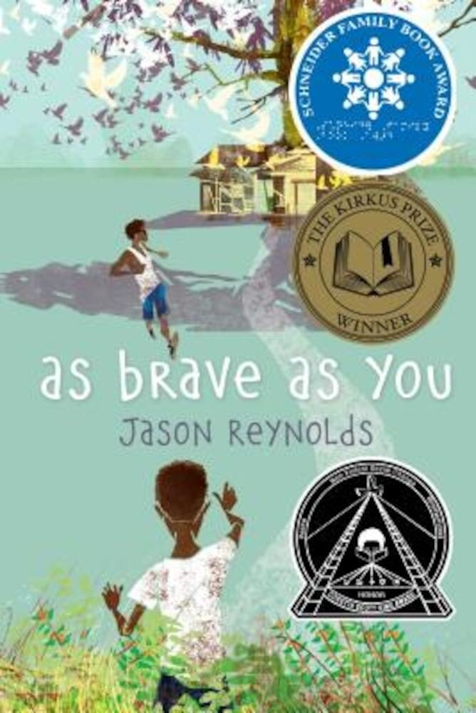 As Brave as You, Hardcover
