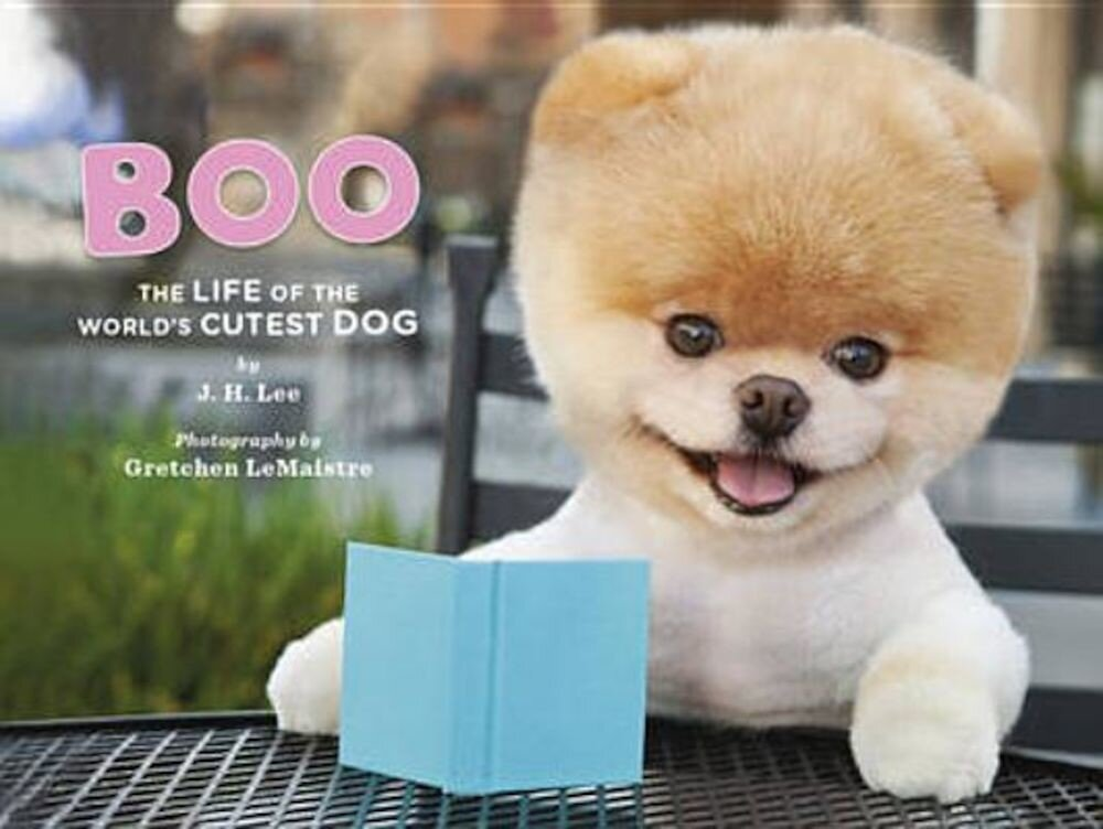 Boo: The Life of the World's Cutest Dog, Hardcover