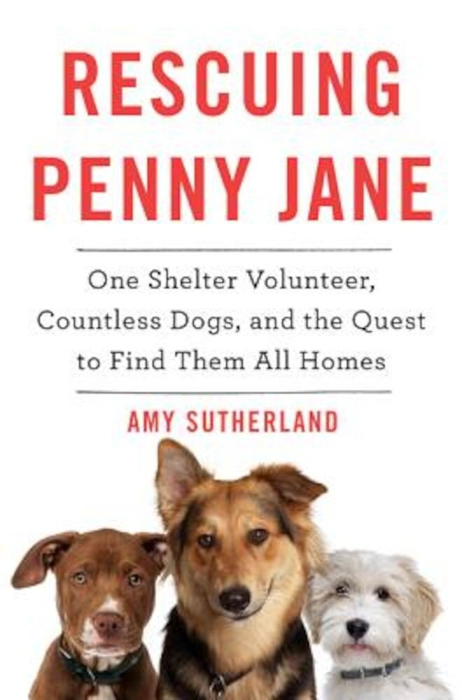 Rescuing Penny Jane: One Shelter Volunteer, Countless Dogs, and the Quest to Find Them All Homes, Hardcover