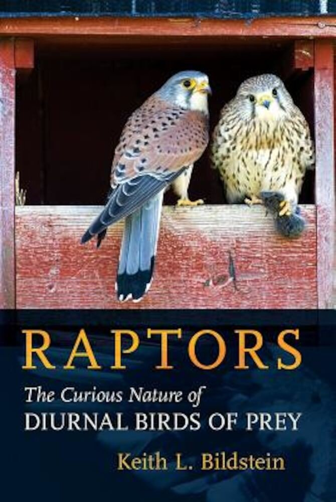 Raptors: The Curious Nature of Diurnal Birds of Prey, Hardcover