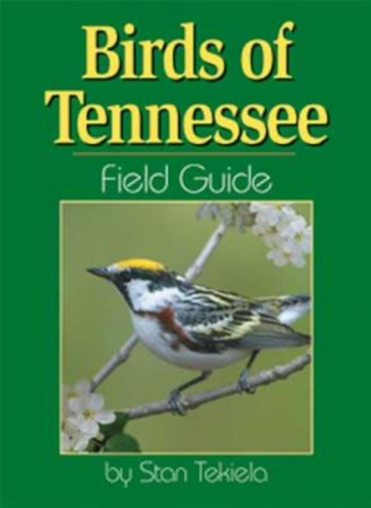 Birds of Tennessee Field Guide, Paperback