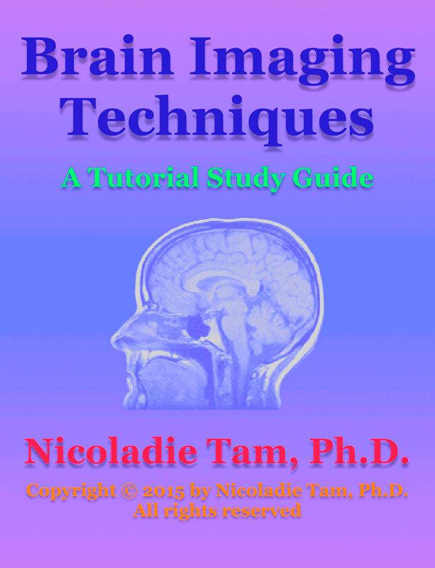Brain Imaging Techniques: A Tutorial Study Guide (eBook)