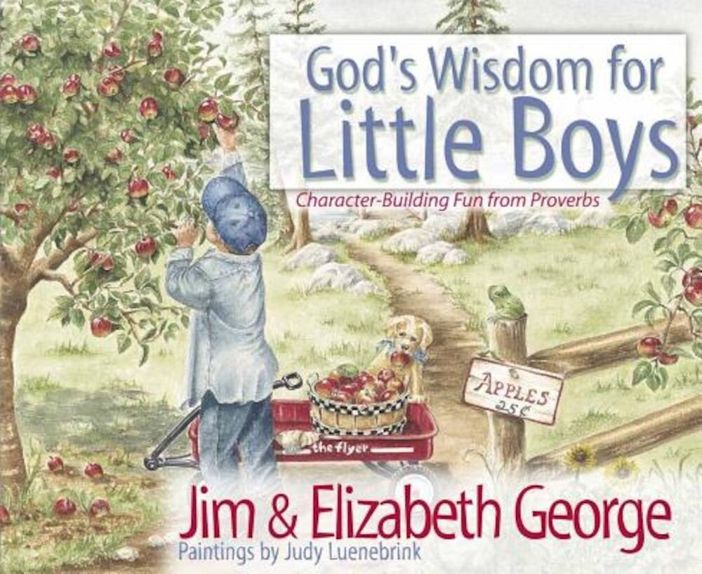 God's Wisdom for Little Boys: Character-Building Fun from Proverbs, Hardcover