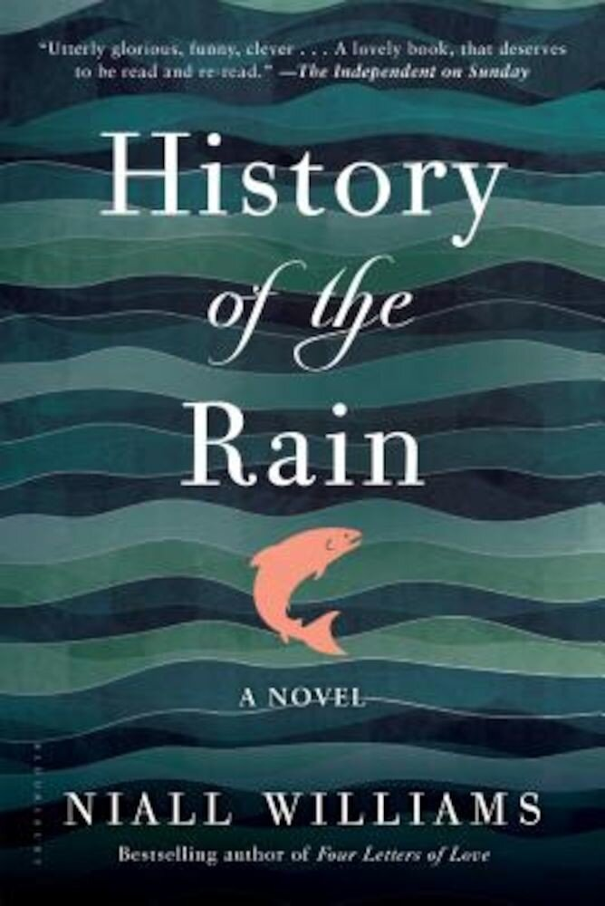 History of the Rain, Paperback