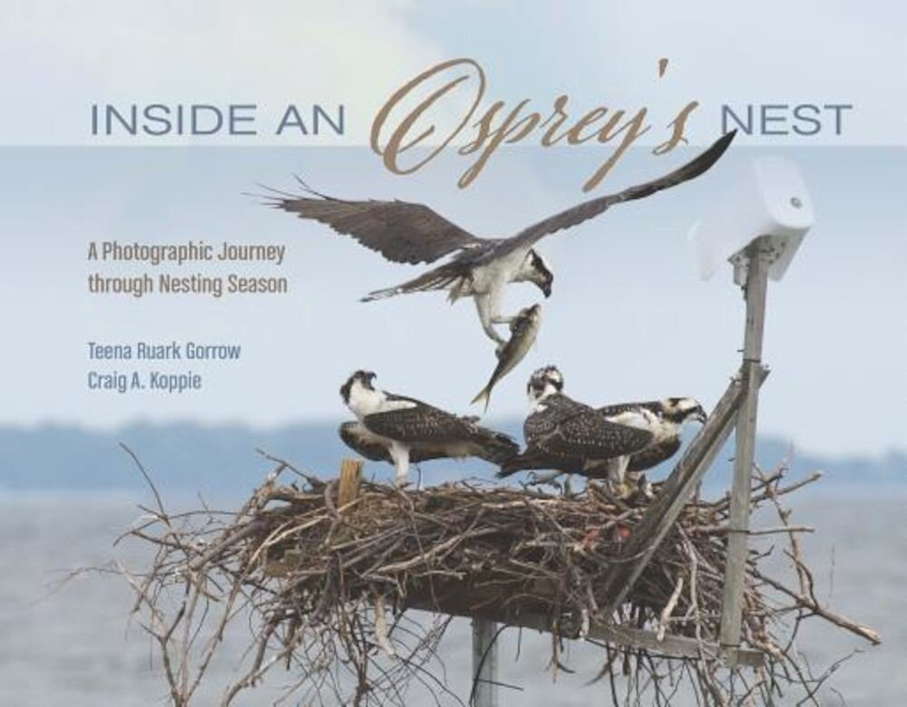Inside an Osprey's Nest: A Photographic Journey Through Nesting Season, Hardcover