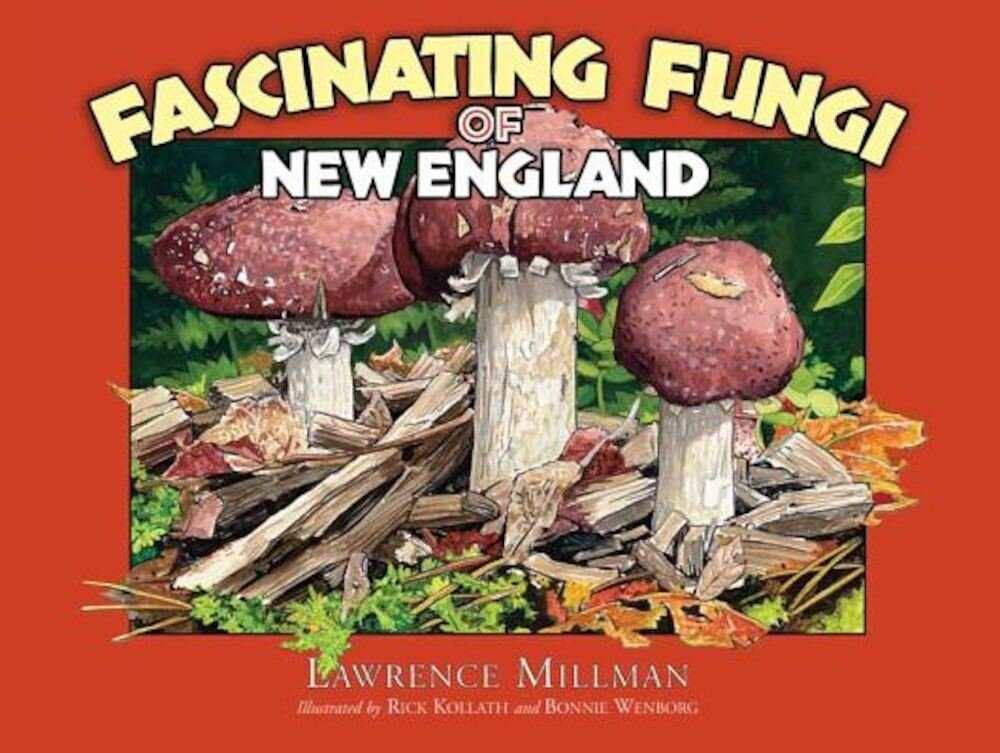 Fascinating Fungi of New England, Paperback