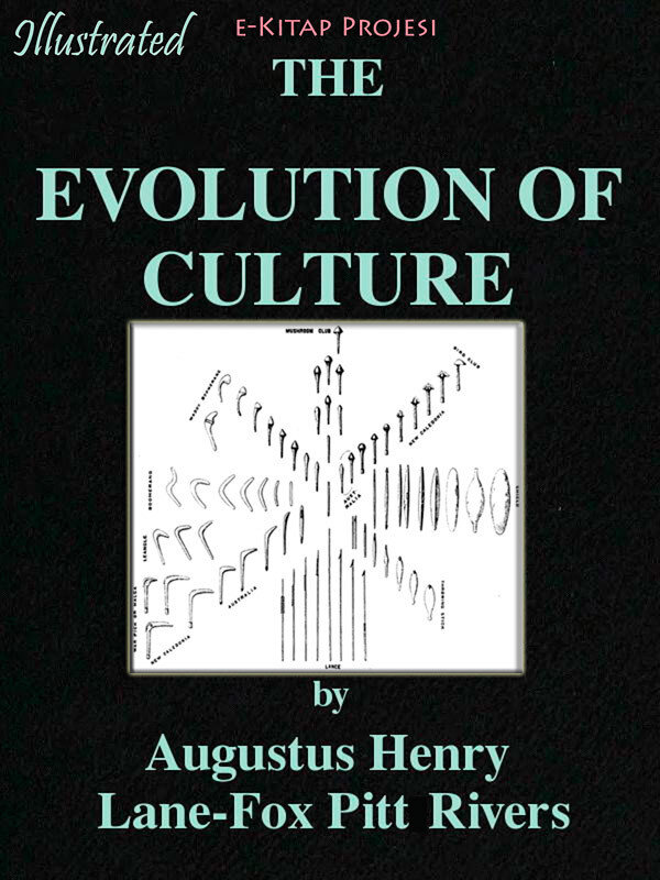 Evolution of the Culture (eBook)