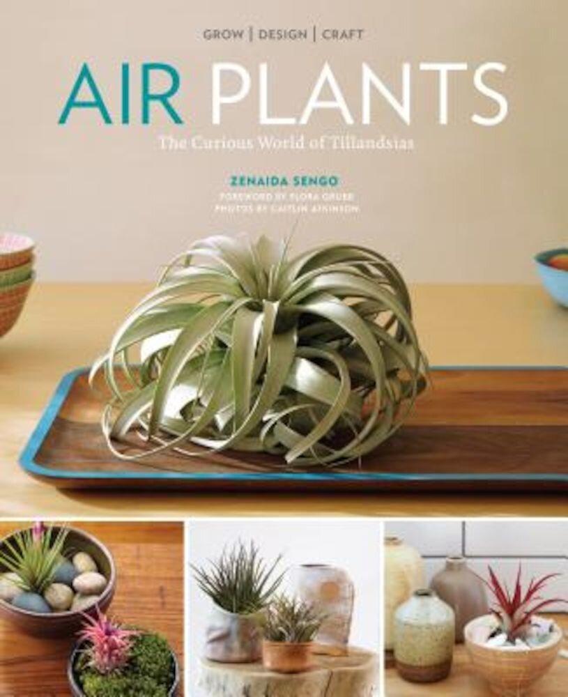 Air Plants: The Curious World of Tillandsias, Paperback