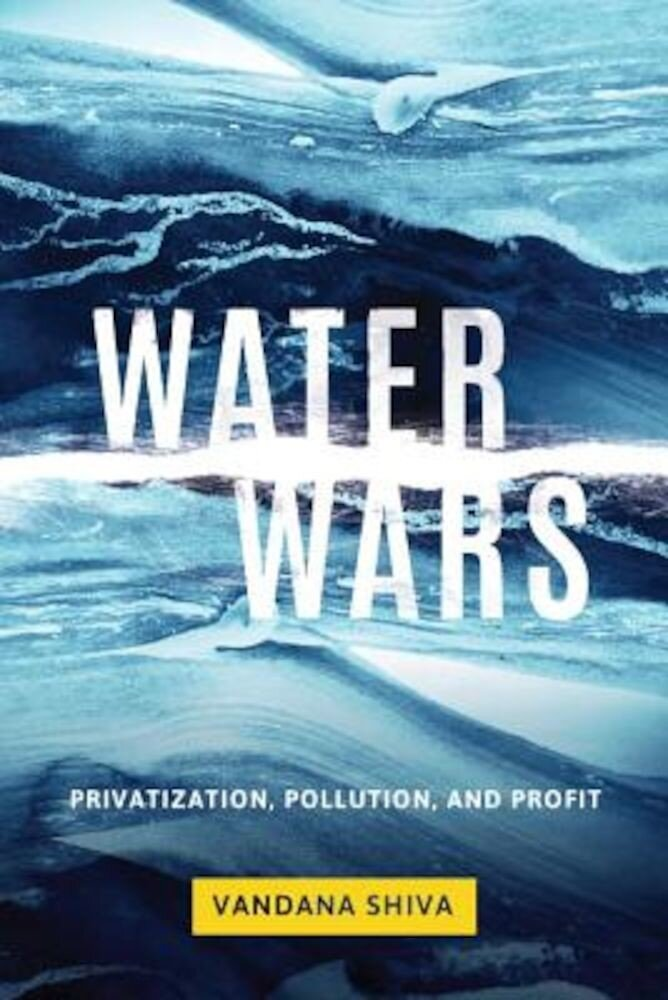 Water Wars: Privatization, Pollution, and Profit, Paperback