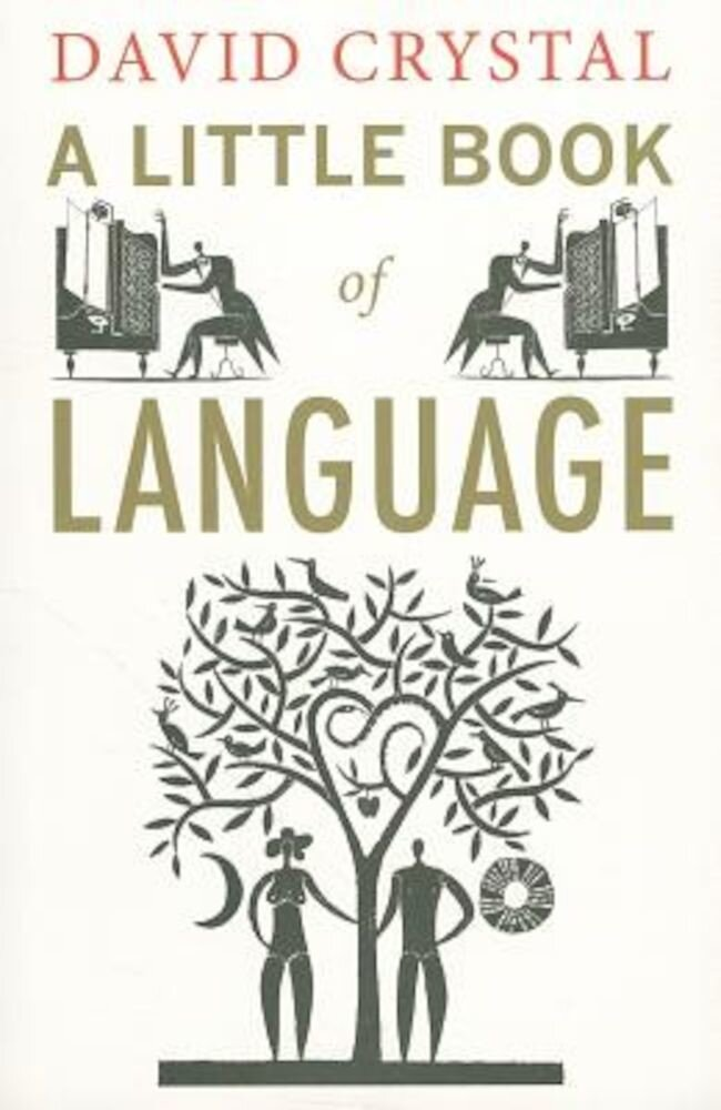 A Little Book of Language, Paperback