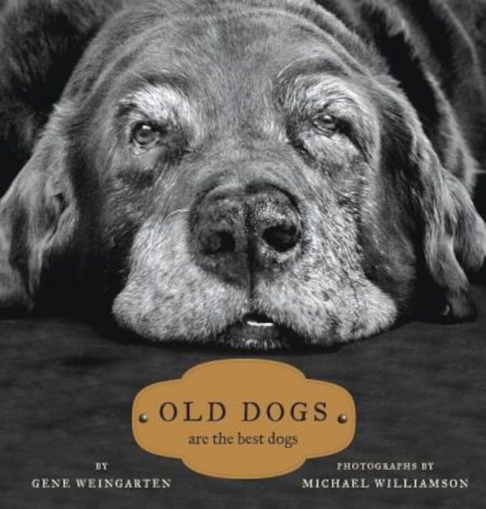 Old Dogs: Are the Best Dogs, Hardcover