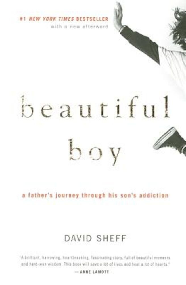 Beautiful Boy: A Father's Journey Through His Son's Addiction, Paperback