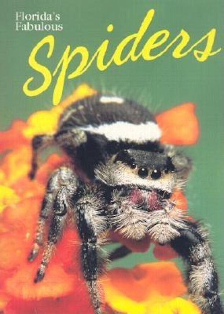 Florida's Fabulous Spiders, Paperback