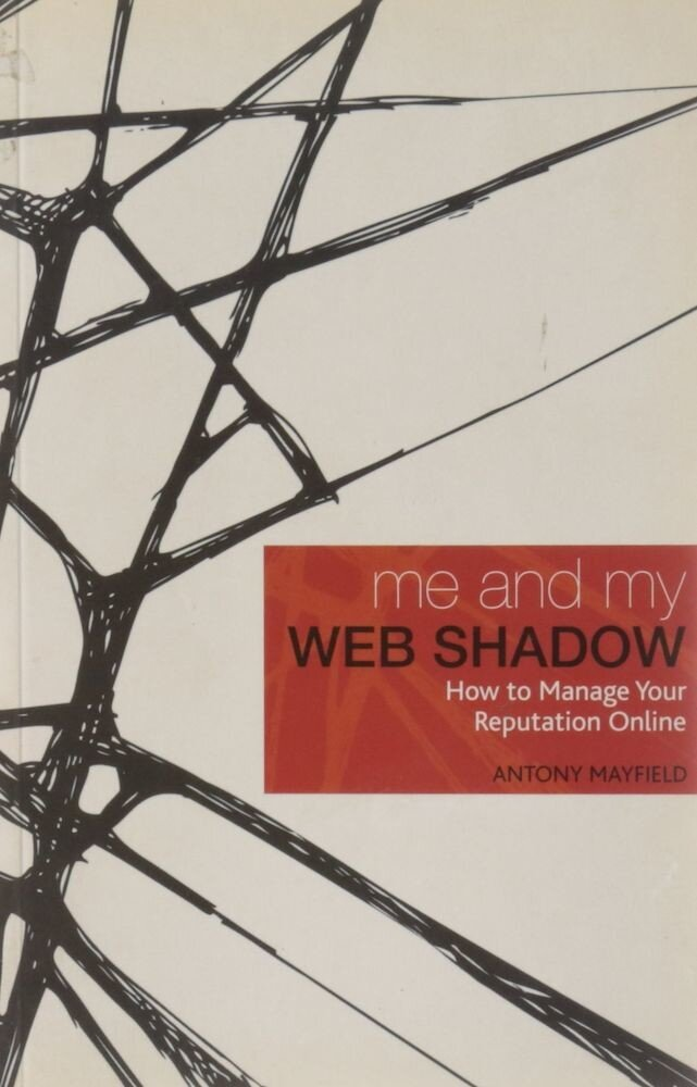 Me and My Web Shadow: How to Manage Your Reputation Online