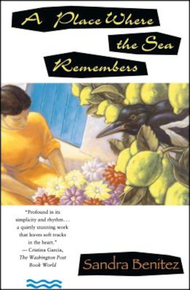 Place Where the Sea Remembers, Paperback