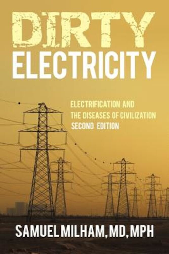 Dirty Electricity: Electrification and the Diseases of Civilization, Paperback