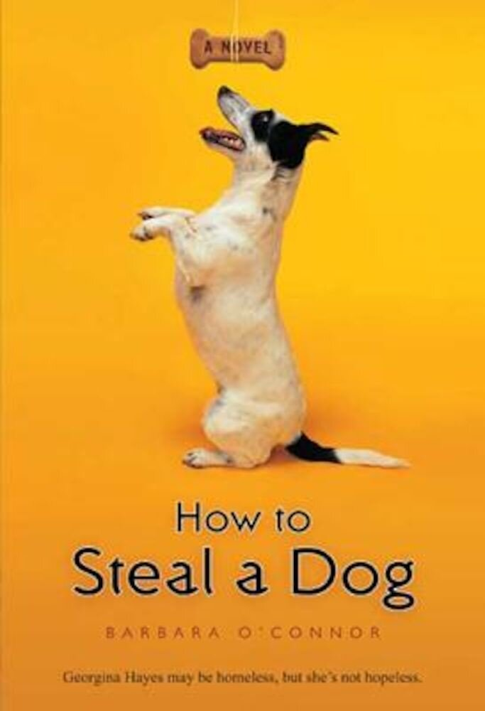 How to Steal a Dog, Paperback