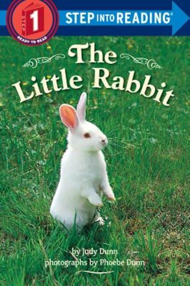 The Little Rabbit, Paperback