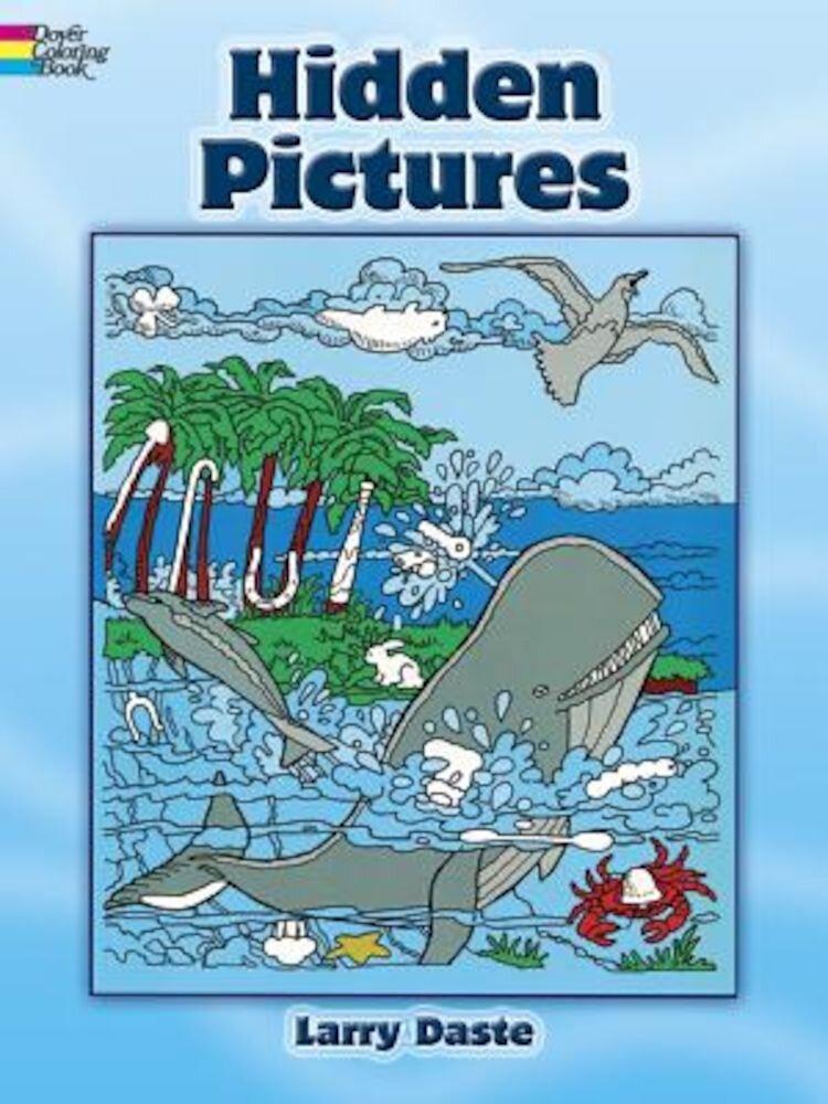 Hidden Pictures, Paperback