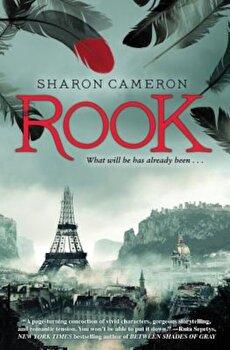 Rook, Paperback/Sharon Cameron imagine