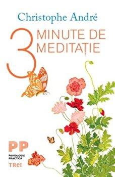 3 minute de meditatie/Cristophe Andre imagine elefant 2021
