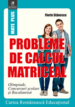 Probleme de calcul matriceal/Florin Stanescu