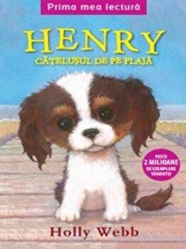 Henry, catelusul de pe plaja/Holly Webb