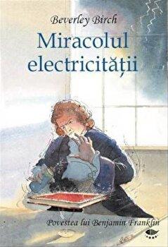 Miracolul electricitatii. Povestea lui Benjamin Franklin/Birch Beverley imagine elefant.ro 2021-2022