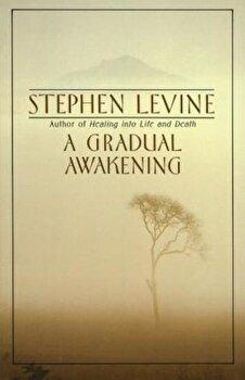 A Gradual Awakening, Paperback/Stephen Levine poza cate