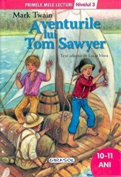 Aventurile lui Tom Sawyer - Nivelul 3/Mark Twain