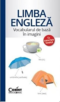 Limba engleza - Vocabularul de baza in imagini/*** imagine elefant.ro 2021-2022